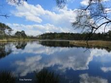 Een weerspiegeling in het water