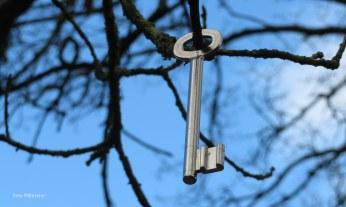 Opgehangen sleutel in een boom ..., 'n nieuwe hangplek?