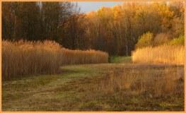 Herfst... er straalde warmte vanaf.... als mooie gloed