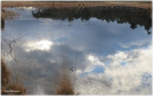 Weerspiegelende wolken in het water
