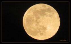 Volle maan 19-02-2019 rond 18.15 uur De supermaan van vanavond wordt ook wel 'supersneeuwmaan' genoemd met haar licht.In de eerste helft van de avond ... stond zij hier nog vrij laag aan de horizon