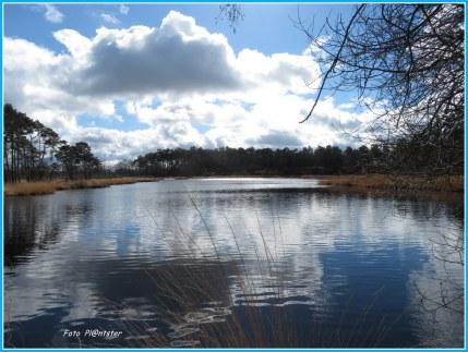 """""""Luchtig mooi..., hoe de lucht is bij de Vennen..., een klein paradijsje op aarde. Zie eens hoe mooi..., Met deze lucht de blauwe kleur met wolkenpracht Wel fascinerend als je erbij stil staat..., mijn verwondering in de natuur Het hoort bij een be-leven waarvan ik mag genieten Groet Plantster"""