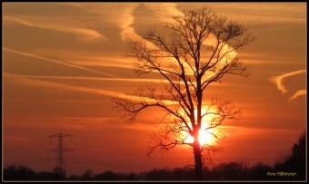 De zon gaat onder..., de gehele dag eergisteren op 22 maart was overgoten met haar licht. Hoe heerlijk het buiten al buiten vertoeven was voor in deze tijd .Het is dan raadzaam als het enigszins mogelijk is om naar buiten te gaan of eventueel iets te ondernemen.Het is elke dag ...,de vraag hoe het weer is.Pluk de dag!In de vroege avond ging de zon haar boeltje in pakken om te gaan zakken met deze warme avondkleur . Groet Plantster