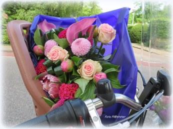 Bloemen zeggen soms meer dan woorden..., het spreekt je gevoel aan