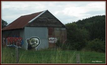 Er zijn verschillende vormen van graffiti met ook een verdeeldheid erover.Zo vinden veel mensen dat het een verwaarloosd aanzien geeft. En juist weer andere mensen vinden het mooi als kunstwerk.Graffiti bleef mij onderweg niet onopgemerkt, door de opvallende kleuren met grote dikke letters. Als voorbeeld zag ik nog deze Graffiti kunst 'MANKS'. Wat vind jij van graffiti? Groet Plantster