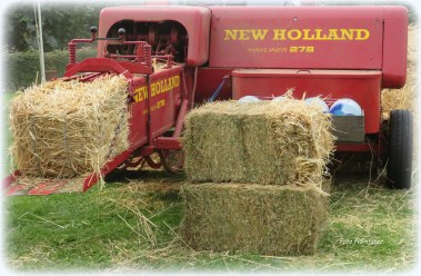 Met 'n soortgelijke hooipers als deze, werd vroeger 't losse hooi of stro tot handzame pakken geperst.