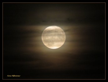 Volle maan liet haar licht schijnen in het duister van de avond