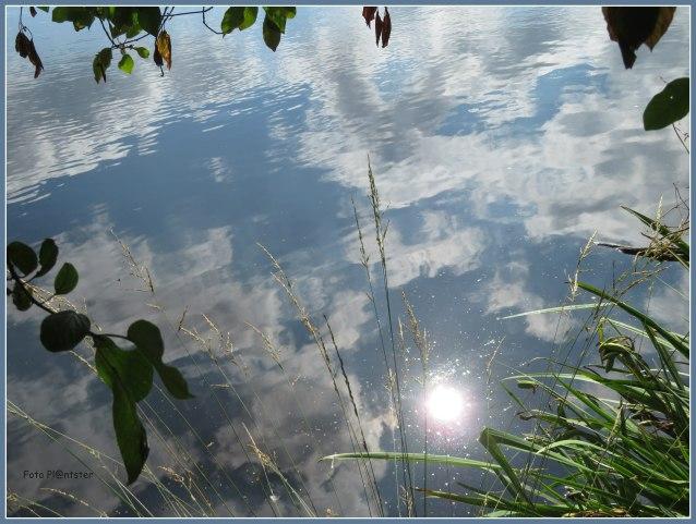 IMG_4244 Zie het zonnig in