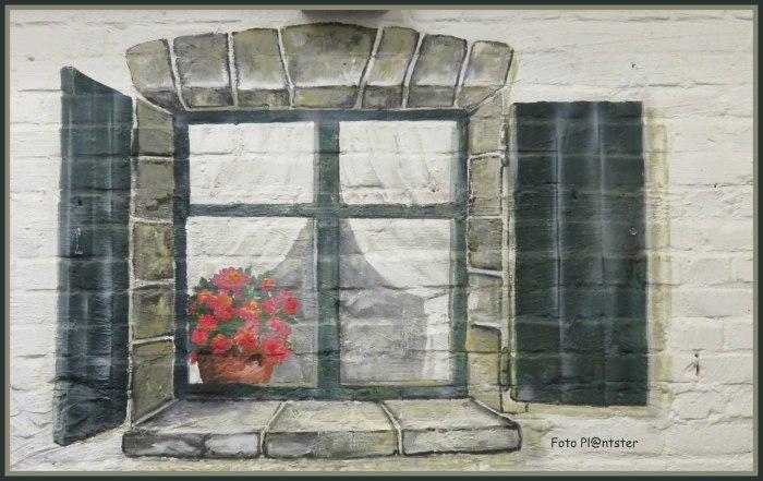 IMG_8746   Het raam.jpg