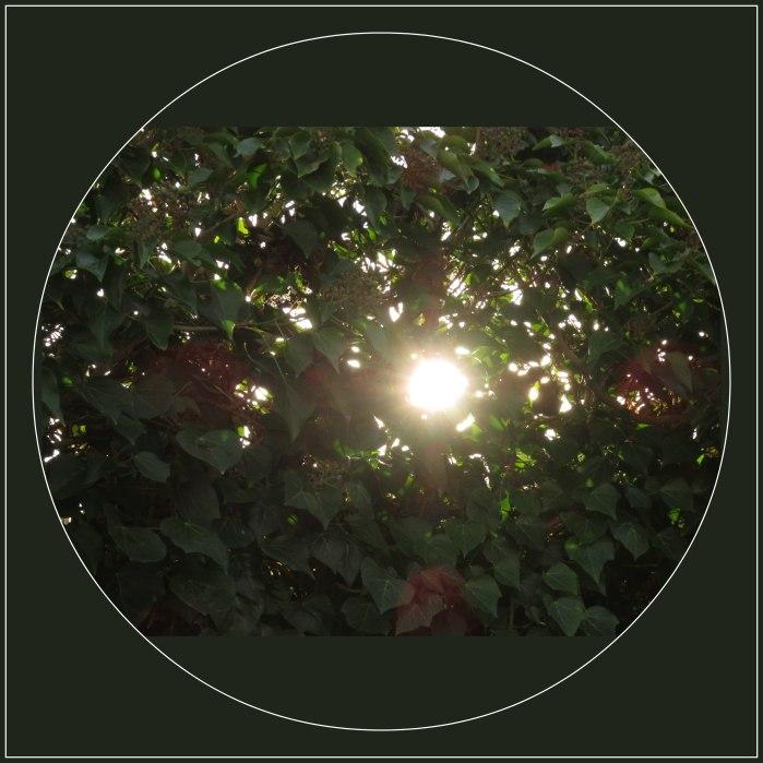 IMG_3828  Doordringend licht.jpg