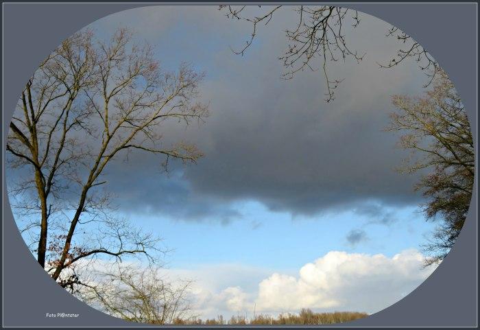 IMG_0187 Wolkendek