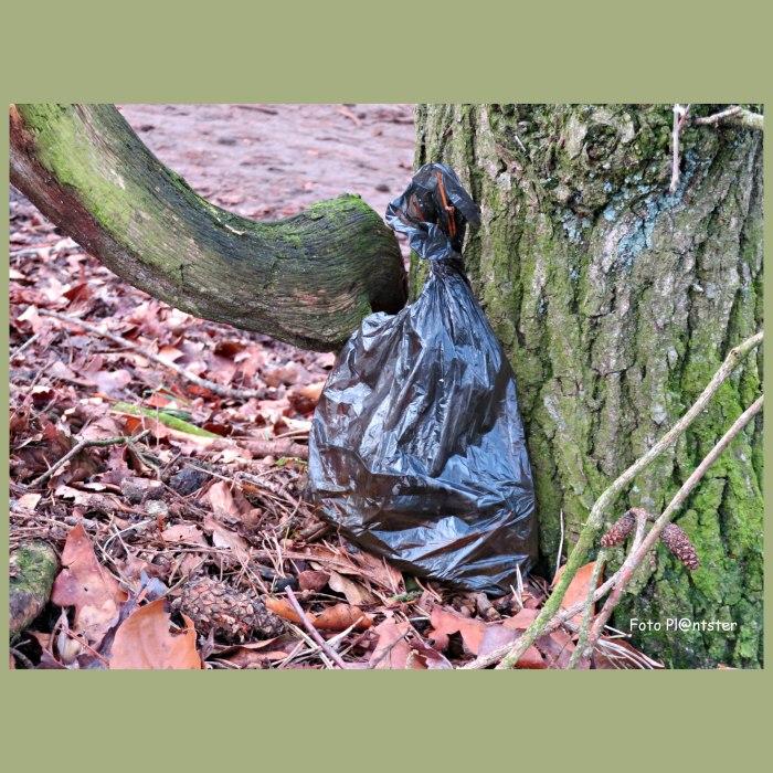 IMG_0247 Hondenzakje in de natuur