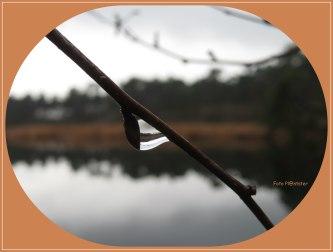 Een vasthoudende regendruppel liet mij iets moois zien