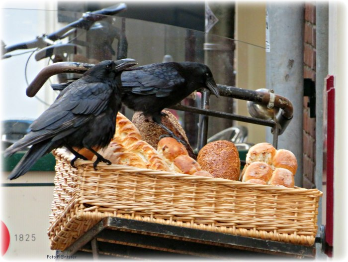 IMG_2245 Brood van de bakker