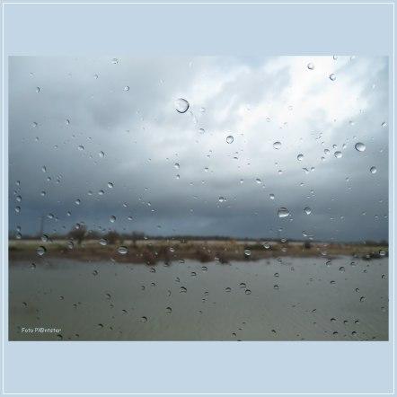 Het was in de afgelopen week afwisselend weer, de hogere temperatuur , flinke regenbuien ,stevige windkracht én de zon niet te vergeten.