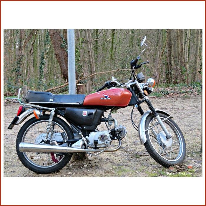 IMG_5768 Honda