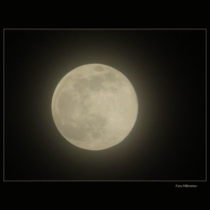 IMG_5957 Volle Maan 9-3-2020