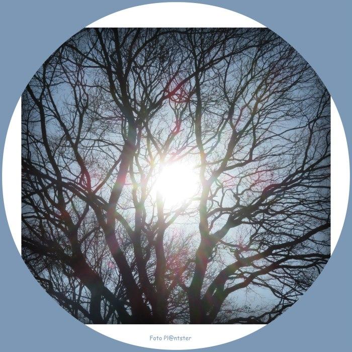 IMG_7234 Met het zonnetje in het hart