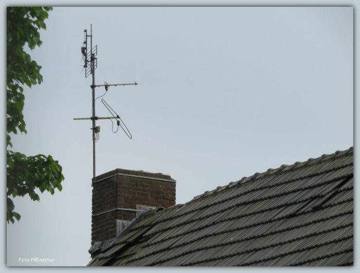 IMG_4364 Antenne Ned 1 2 3
