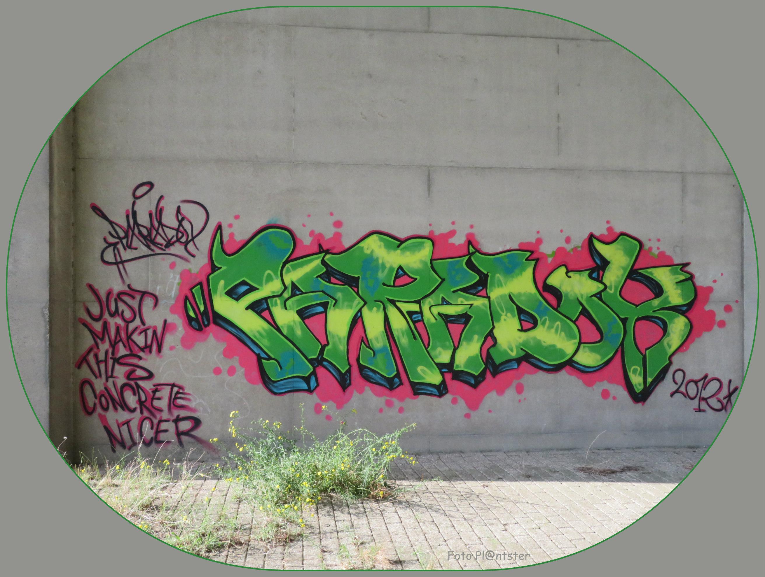 IMG_9558 In kleur