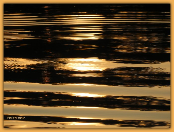 IMG_8931 Water goud