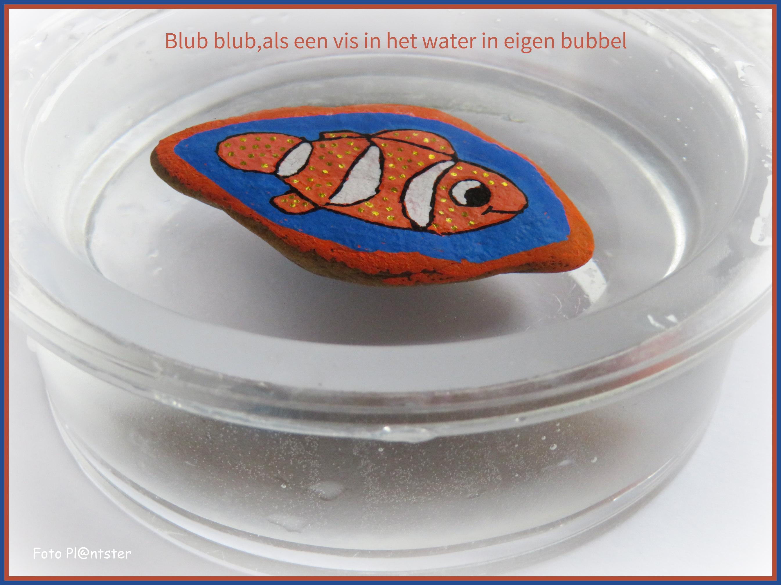 IMG_0369 Blub blub