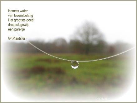 Hemels water van levensbelang. Het grootste goed druppelsgewijs een pareltje.