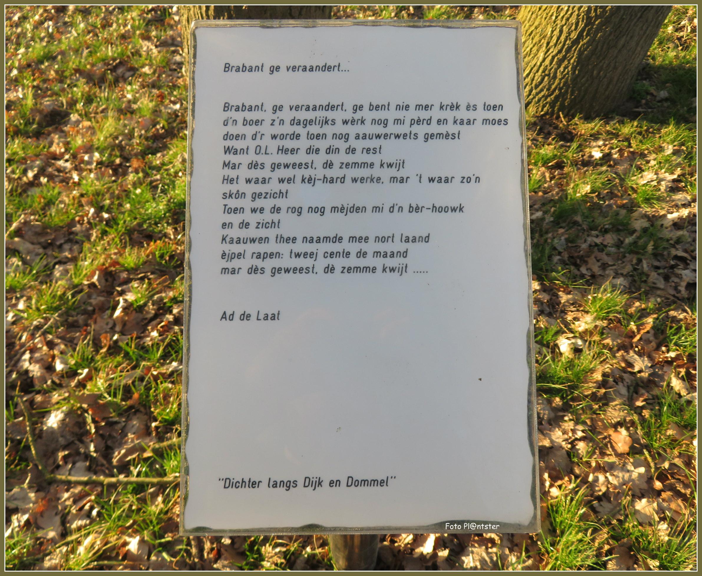 IMG_4909 Brabant