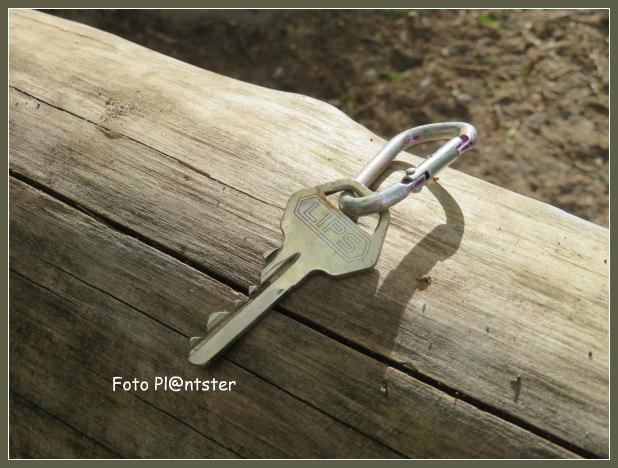 Cilindersleutel (getand)