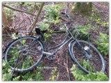 Met de indruk alsof de fiets 'geleend' en achtergelaten tussen de struiken. In de loop van tijd vergeten helaas roestend in de natuur.