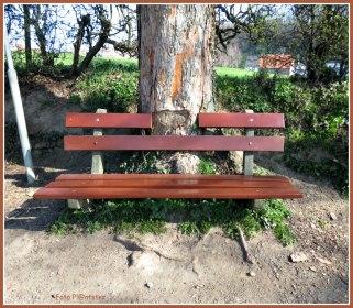 'n Hart op bomen of is het 'n hart voor bomen. Met in de stilte rust vinden, 't doet deugd wees (uit)gerust als stamgast bij een boom .Buiten een bank om achterover leunend Of een bank voor een stam met een steuntje in de rug waar je op aan kan, daar kom je op terug.