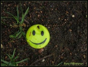 Met een glimlach