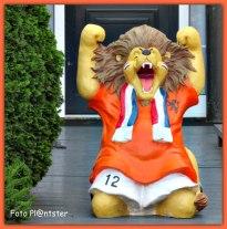 De Hollandse leeuw is als nationaal symbool prominent aanwezig in Nederland. Of het nu ons Rijkswapen of het tenue van ons nationale voetbalelftal is, dit onverschrokken roofdier prijkt er prominent op. Toch is de keuze voor de leeuw als symbool op zijn minst opmerkelijk. Bron internet